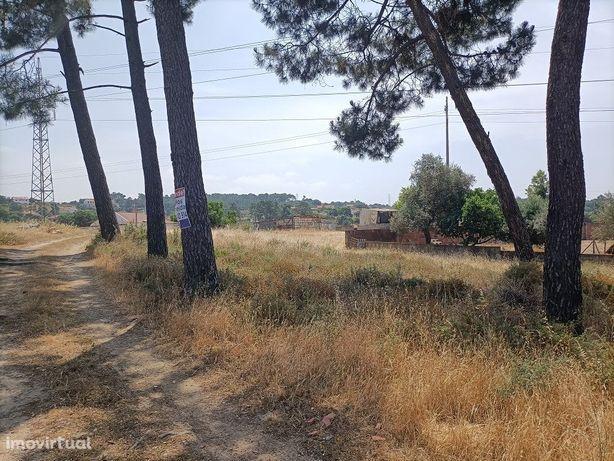 Terreno Urbano | Gaveto | 267 m2