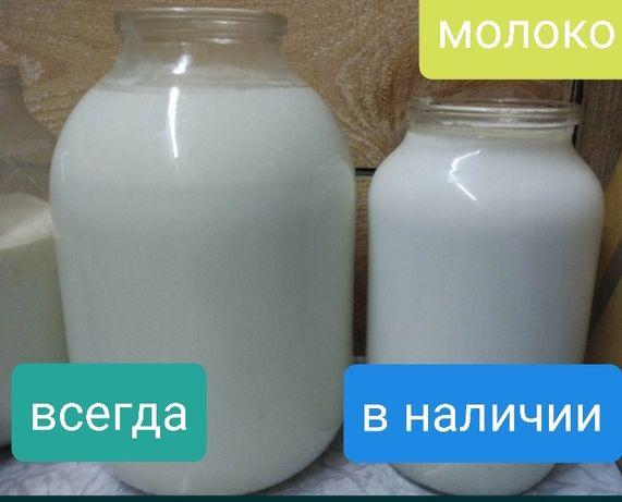 Молоко, масло, сметана, творог- Доставка