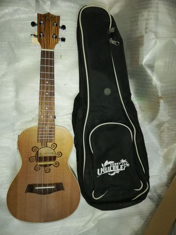ukulele concerto zebrano