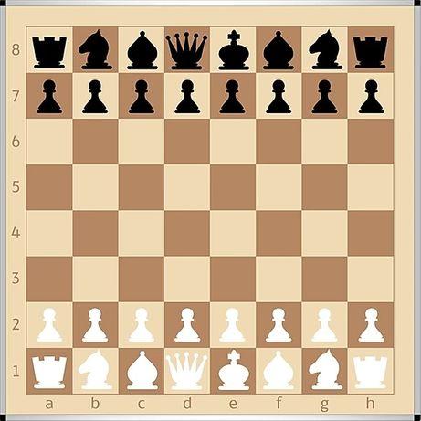 Демонстрационная шахматная доска (цвет КОМФОРТ)