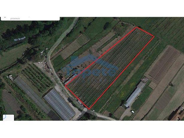 Terreno Agrícola Com Àrea 5.822 M2 Para Venda Em Sobreira