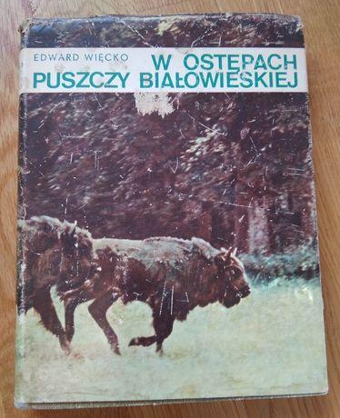 """Edward Więcko """"W ostępach Puszczy Białowieskiej"""""""