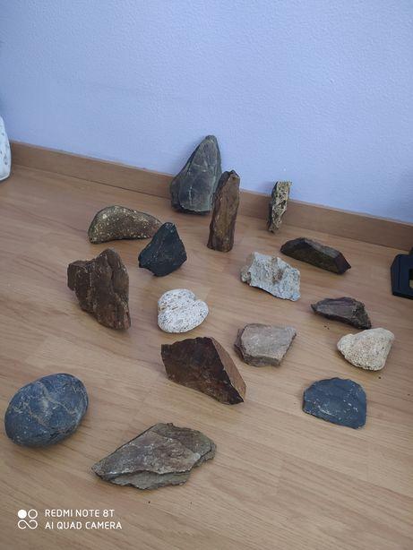 Pedras de aquário