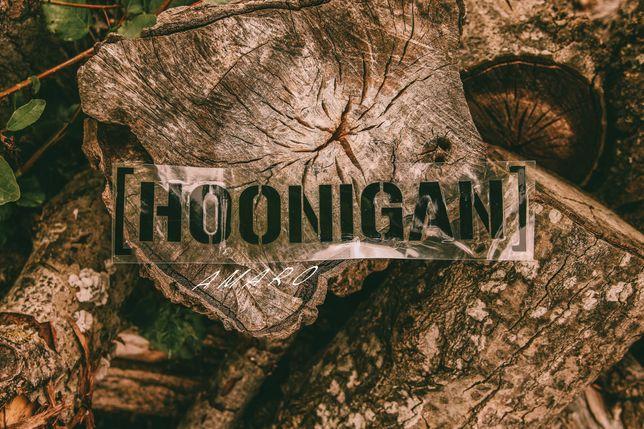 Autocolante para Carro Hoonigan (Preto) Nº3   NOVO