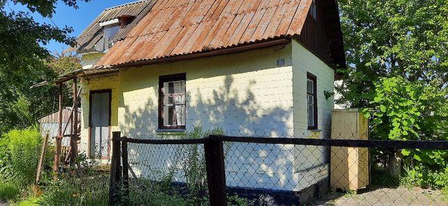 Дача Жавинка , с/т Янтар