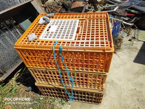 Caixa de transporte de aves ou coelhos