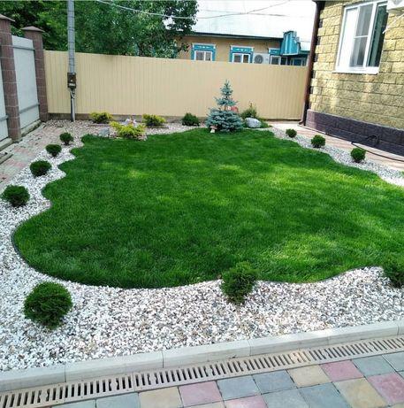 Уникальный Низкорослый ГАЗОН для ландшафтного озеленения семена трава