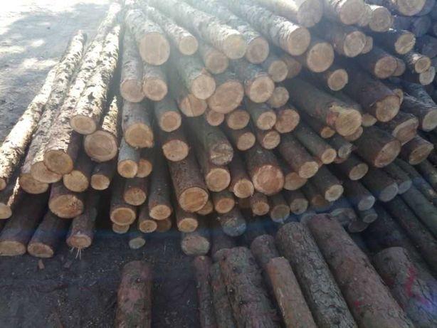 Stemple budowlane,słupki ogrodzeniowe drewniane