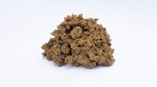 Organiczno-mineralny osad nawozowy – do poprawy właściwości gleby