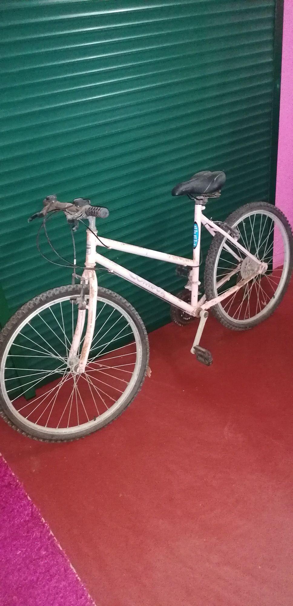 Bicicleta para mulher