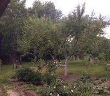 Дачный участок в садоводческом товариществе Сулимовский