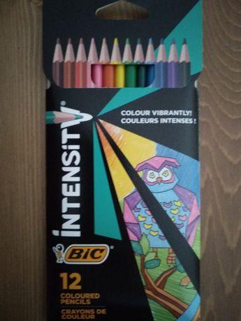Embalagem de colorir BIC (novo!)