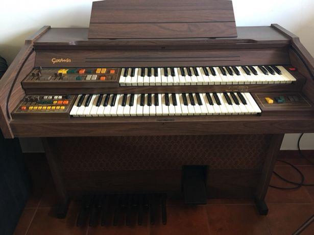 Órgão Godwin