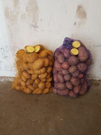 Ziemniaki Tajfun Owacja Dżeli Bellaroza dowóz faktura