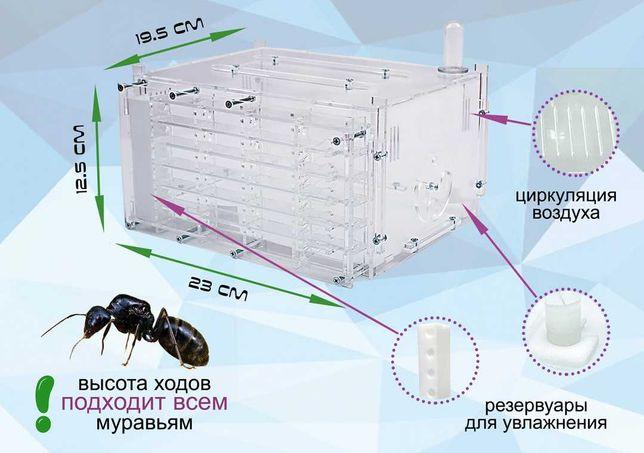 """Вертикальная Муравьиная ферма """"Небоскреб"""" - для муравьев Жнецов"""