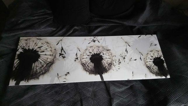 Obraz na płótnie 150x50 dmuchawce