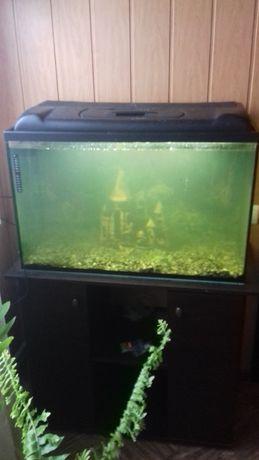 акваріум 160 л