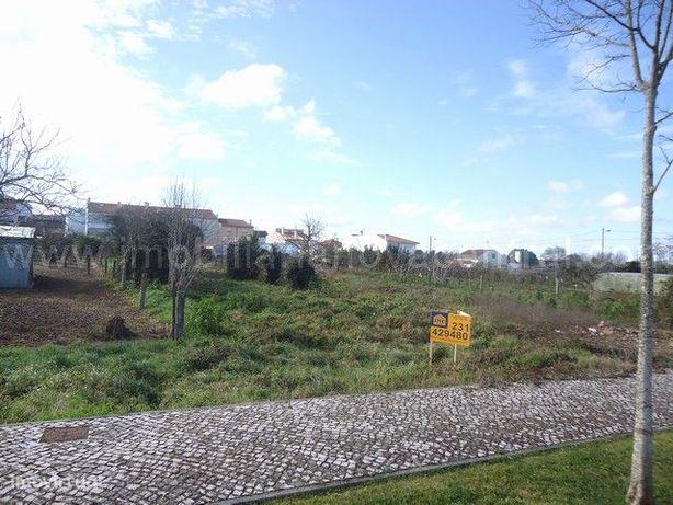 Terreno Para Construção  Venda em Cantanhede e Pocariça,Cantanhede