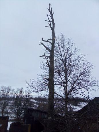 Рубаэмо и рижемо дрова