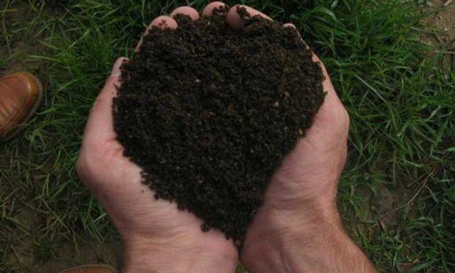 Чернозем, песок речной, овражный с доставкой Киев и Киевская бласть