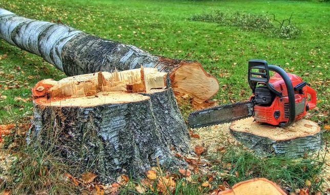 Спил деревьев,очистка участков от паросли