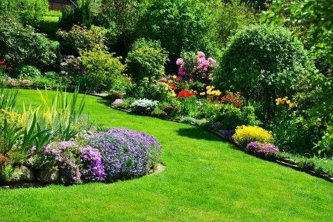 Ogrodnictwo, ogród, ogrodnik, nawodnienie, projektowanie, pielęgnacja.