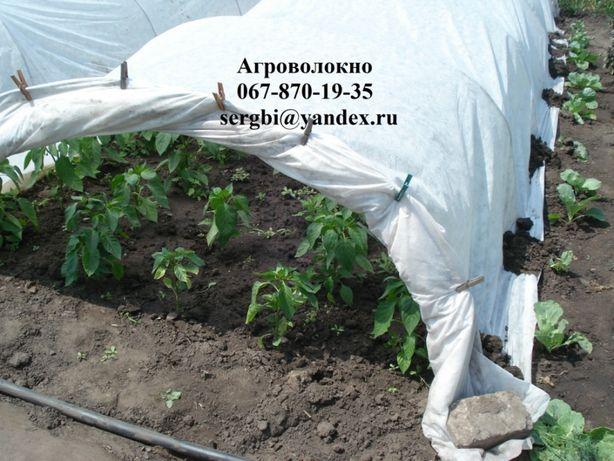 Агроволокно 60 г/м² защита от заморозков, (1.6*10м)