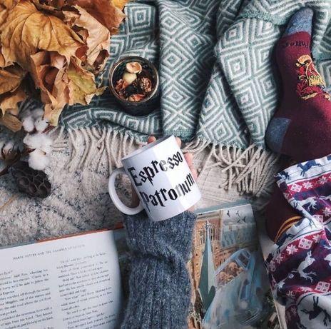 Чашка кружка Гарри Поттер