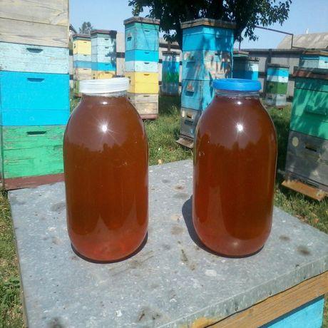 Мед, мёд, натуральний мед