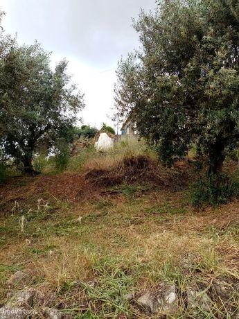 Terreno para Construção de Moradia em Ortiga, Mação