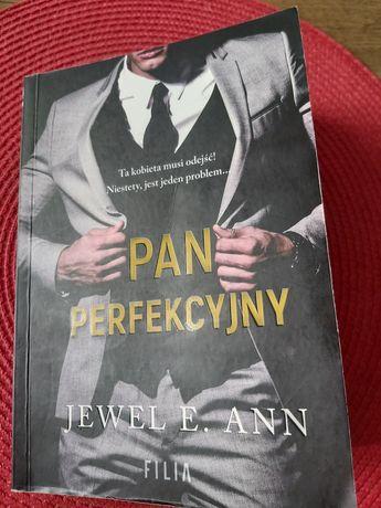 Pan perfekcyjny - Jewel E. Ann