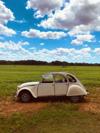 Aluguer de carro clássico: Citroen 2cv - Serviços e Eventos