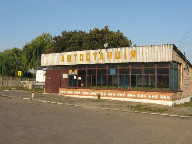 здається в оренду приміщення смт Рожище вул. Героїв УПА, 17