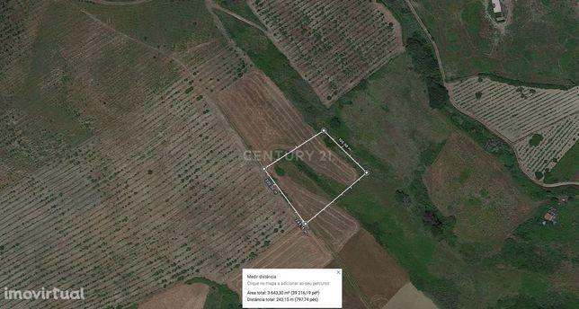 Terreno Agrícola com 3.640 m2 em Enxara do Bispo
