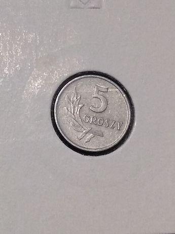Moneta 5 groszy 1962