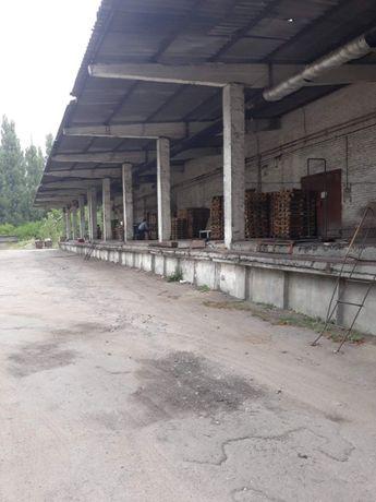 Долгосрочная АРЕНДА базы на Свиштовской!