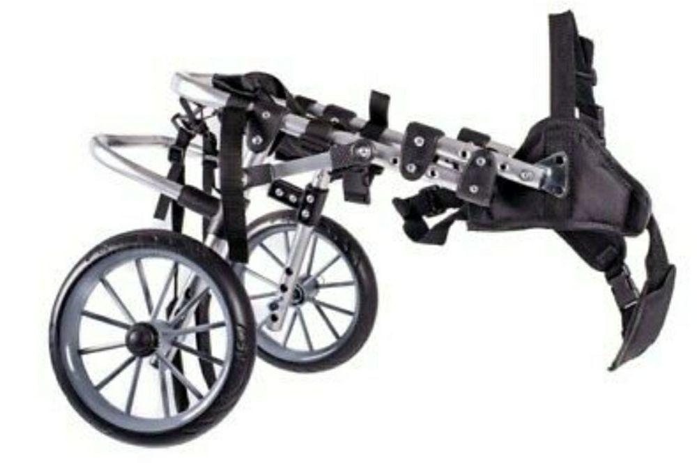 wózek inwalidzki dla psa Rybnik - image 1