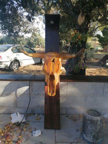 Ossada Cabeça de touro