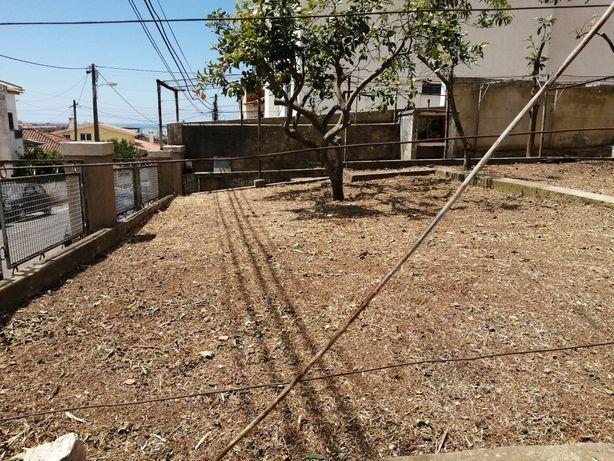 Limpeza de terrenos ou quintal