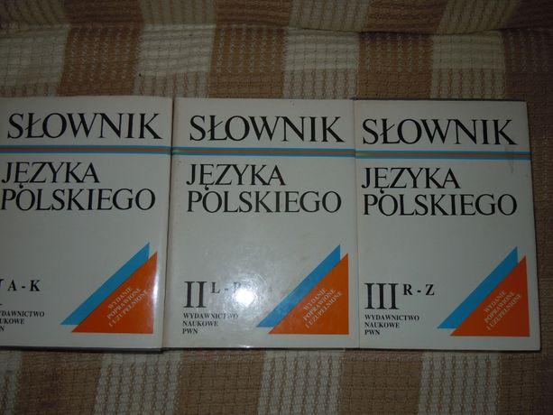 Słownik Języka Polskiego 3 Tomy