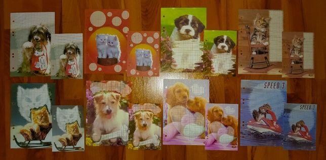Karteczki Zwierzęta - A5 i A6