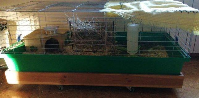 Podstawka drewniana mobilna do klatka 60x120 królik świnka morska