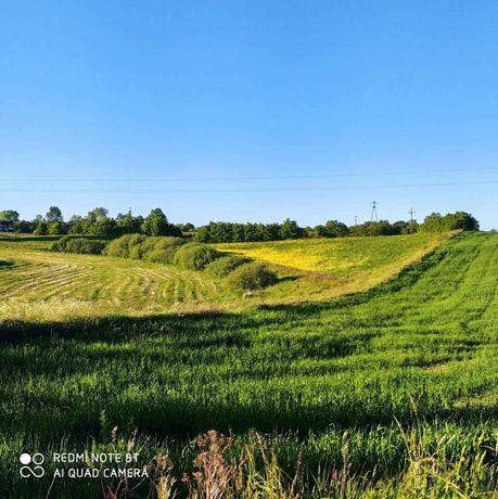 Ziemia rolna / Działka rolna