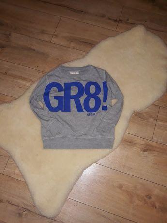 Bluza Zara dla chłopca stan super roz 116