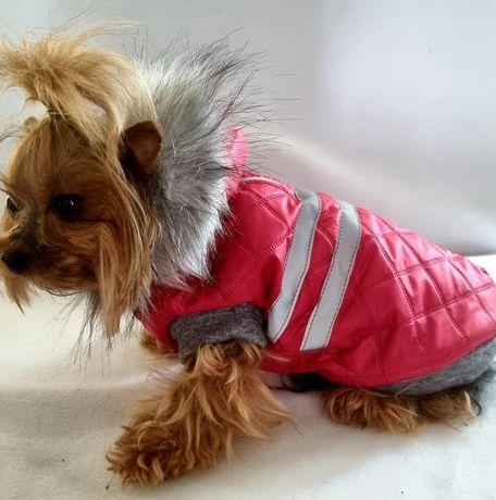 Kurteczka ubranko zimowe dla psa york .maltańczyk mops szyte na miare
