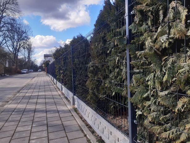 Ogrodzenie Panelowe, Palisadowe, Brama, MONTAŻ, TRANSPORT, PRODUKCJA