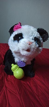 Panda Pom-Pom, chodzi, wydaje dźwięki, pije z buteleczki