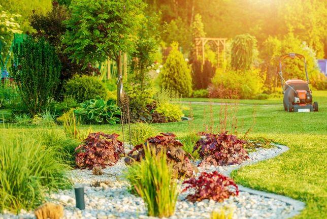 Tanie i kompleksowe usługi ogrodnicze