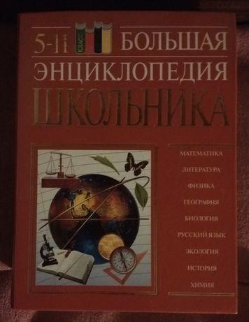 Большая энциклопедия школьника 5-11 класс