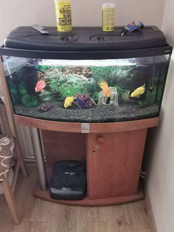 Sprzedam akwarium